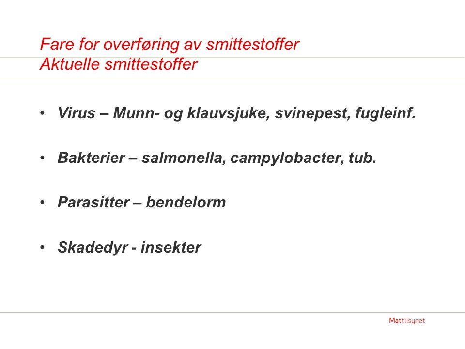 Fare for overføring av smittestoffer Aktuelle smittestoffer •Virus – Munn- og klauvsjuke, svinepest, fugleinf. •Bakterier – salmonella, campylobacter,