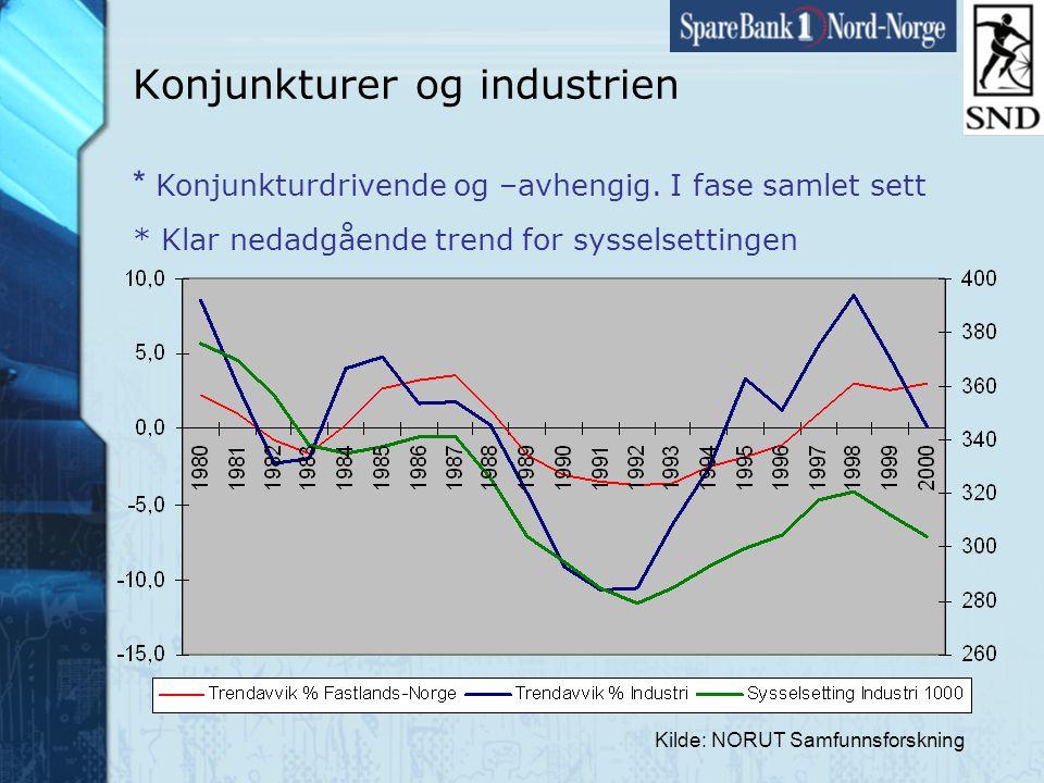 Side21 www.snn.no Kilde: NORUT Samfunnsforskning Konjunkturer og industrien * Konjunkturdrivende og –avhengig.