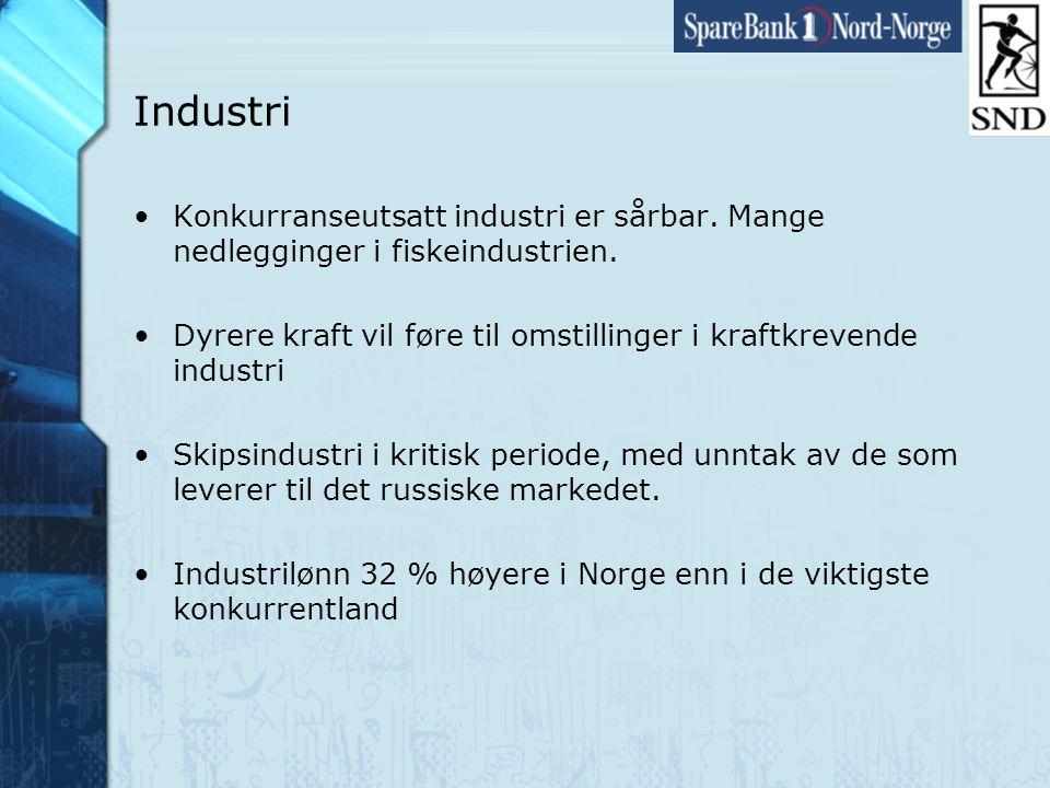 Side22 www.snn.no Industri •Konkurranseutsatt industri er sårbar.