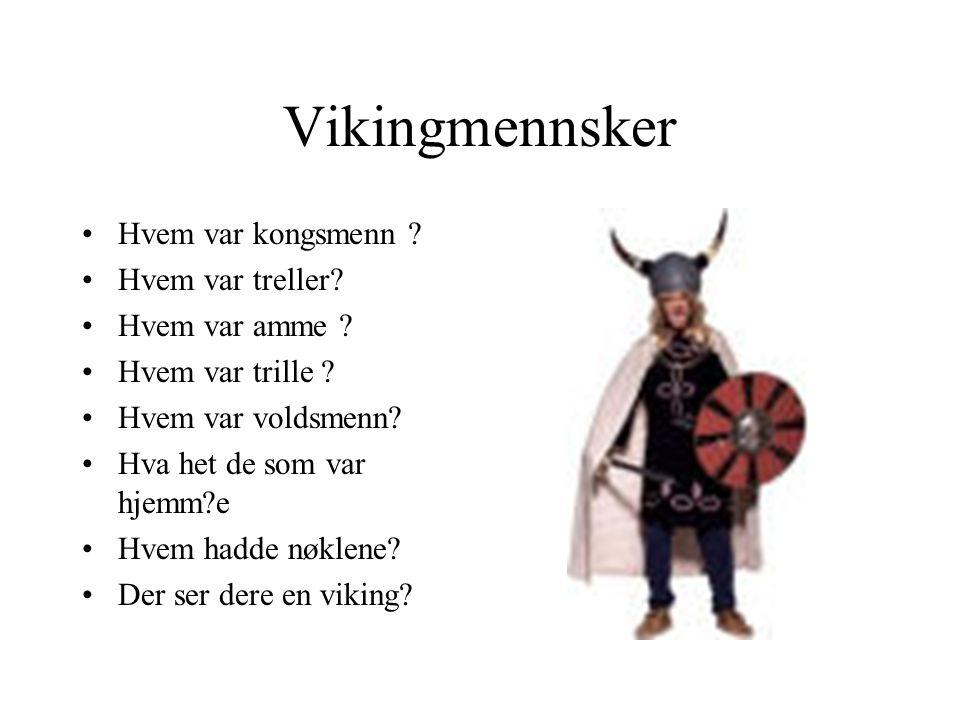 Vikingtokter •Hvor reiste de vikingene til .•Hvor kom vikingene.