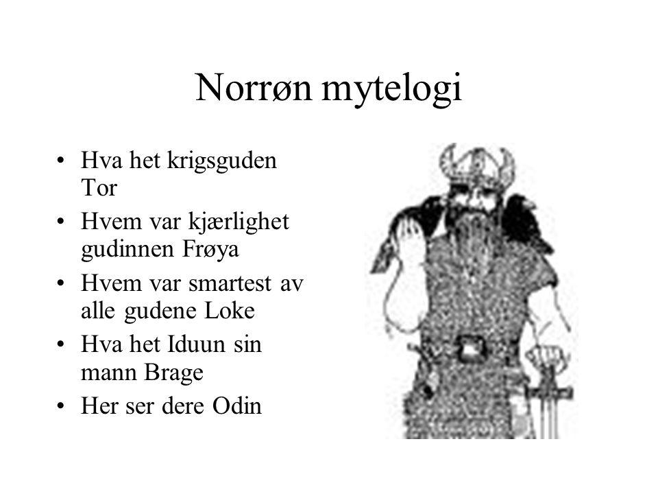 Dagligliv •Hvilken transport hadde vikingene.•Hva slags mat hadde de.