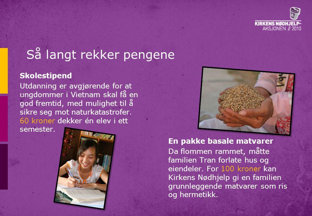Så langt rekker pengene Kyllingflokk En kyllingflokk (40 kyllinger) koster 300 kroner og gir en familie inntektsmuligheter ved salg av egg og kyllinger, og bidrar også direkte med mat til husholdningen.