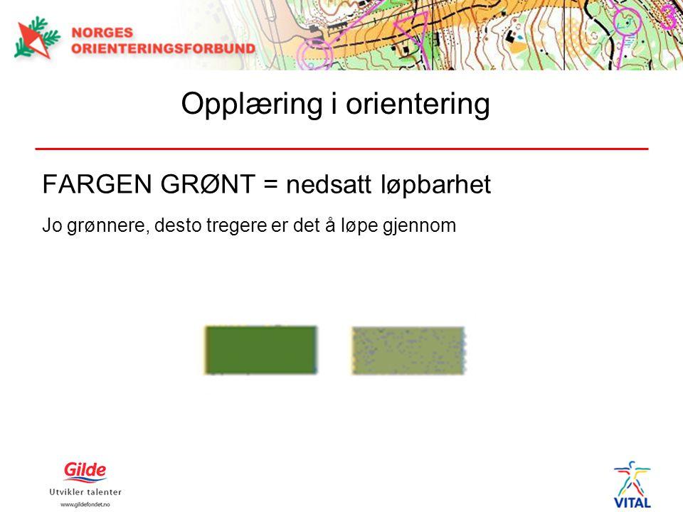 FARGEN GRØNT = nedsatt løpbarhet Jo grønnere, desto tregere er det å løpe gjennom Opplæring i orientering