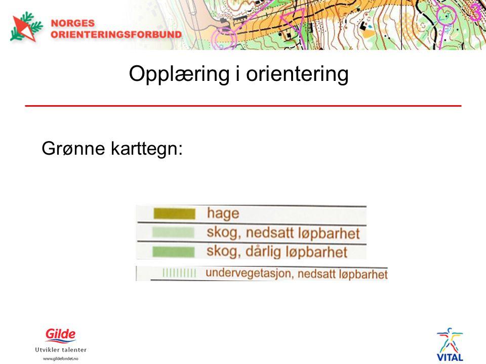 Grønne karttegn: Opplæring i orientering