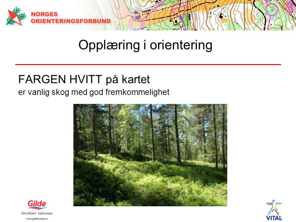 FARGEN HVITT på kartet er vanlig skog med god fremkommelighet Opplæring i orientering
