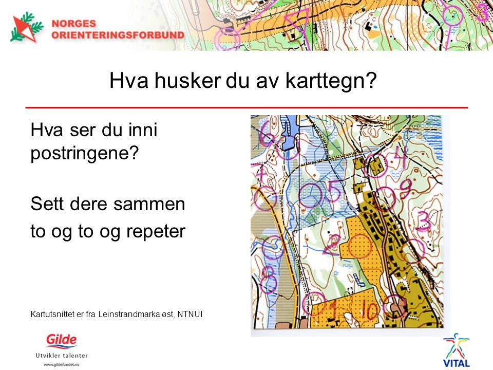 Hva husker du av karttegn? Hva ser du inni postringene? Sett dere sammen to og to og repeter Kartutsnittet er fra Leinstrandmarka øst, NTNUI