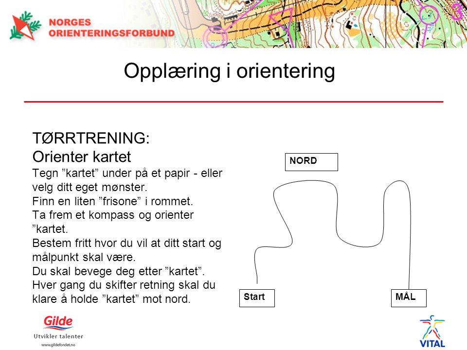 """TØRRTRENING: Orienter kartet Tegn """"kartet"""" under på et papir - eller velg ditt eget mønster. Finn en liten """"frisone"""" i rommet. Ta frem et kompass og o"""