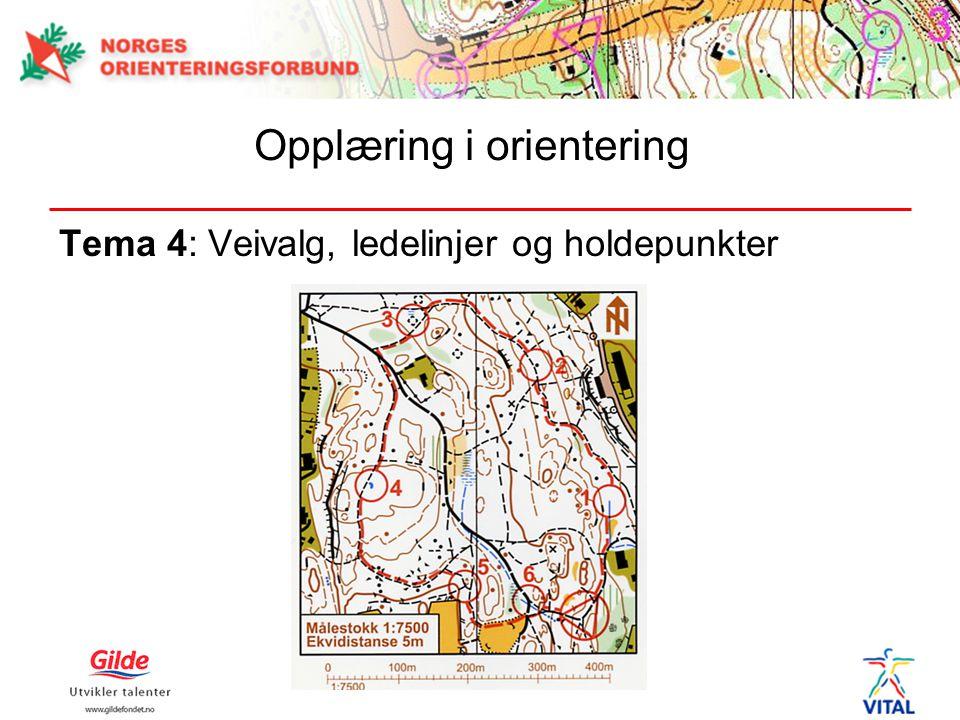 Tema 4: Veivalg, ledelinjer og holdepunkter Opplæring i orientering