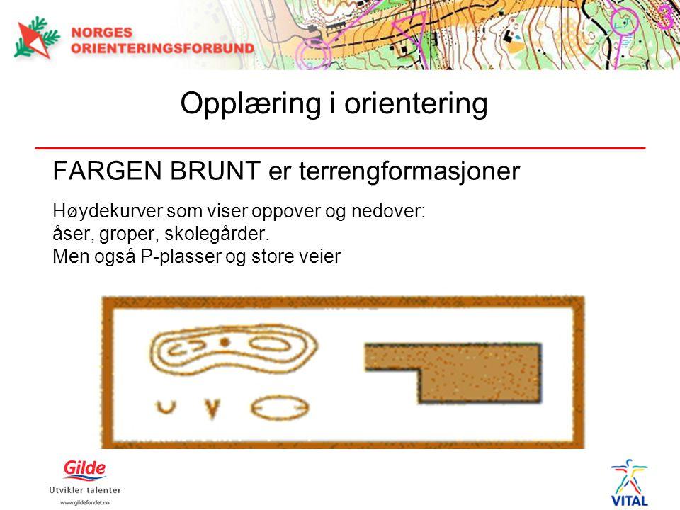FARGEN BRUNT er terrengformasjoner Høydekurver som viser oppover og nedover: åser, groper, skolegårder. Men også P-plasser og store veier Opplæring i