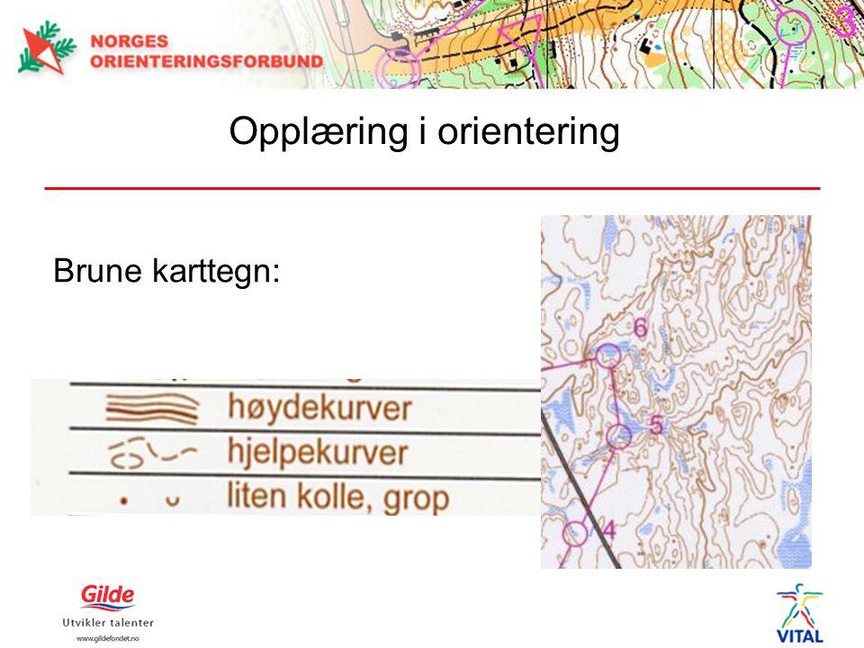 Brune karttegn: Opplæring i orientering