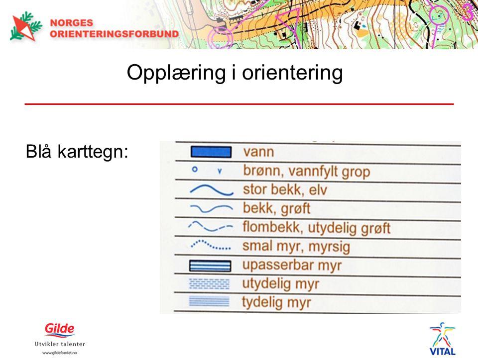 Blå karttegn: Opplæring i orientering