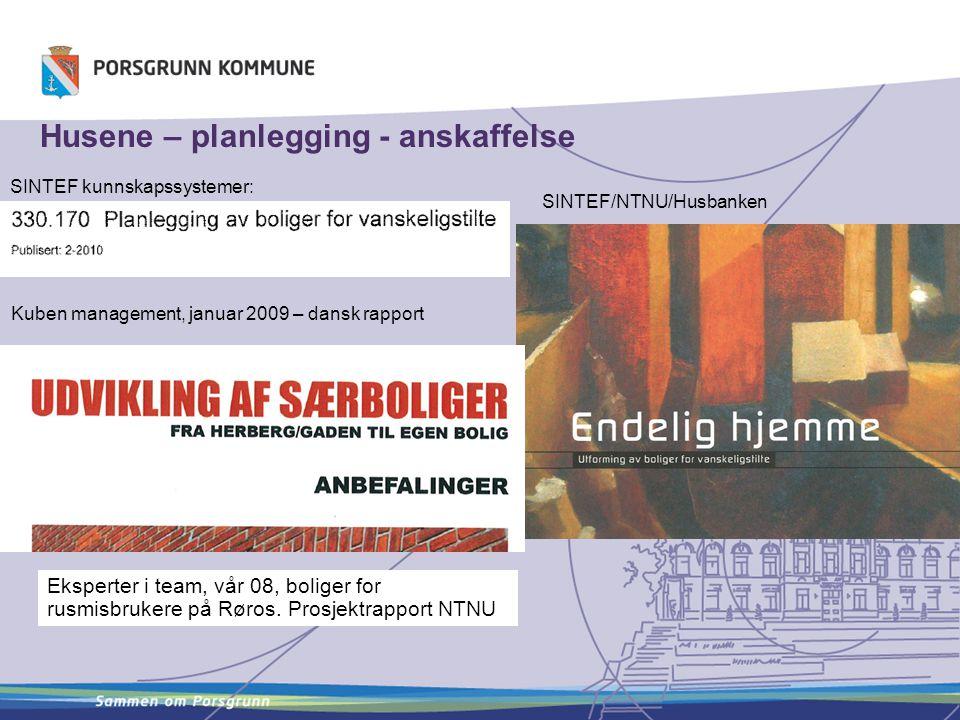 Husene – planlegging - anskaffelse SINTEF kunnskapssystemer: Kuben management, januar 2009 – dansk rapport Eksperter i team, vår 08, boliger for rusmi