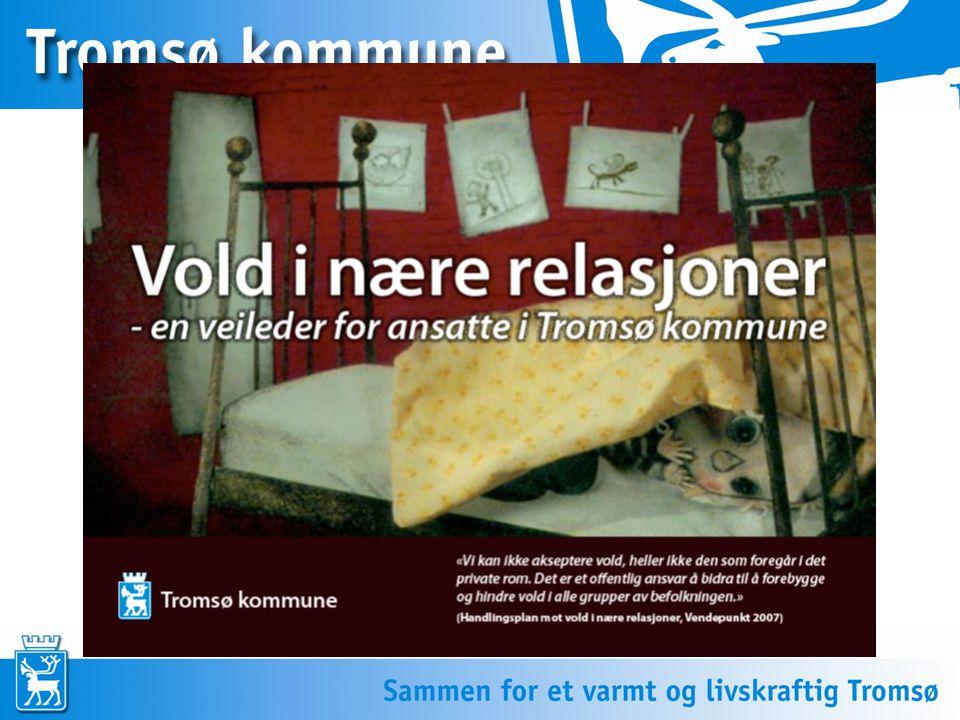 Tema: Hva er vold i nære relasjoner.Voldens konsekvenser – for barn og partner.