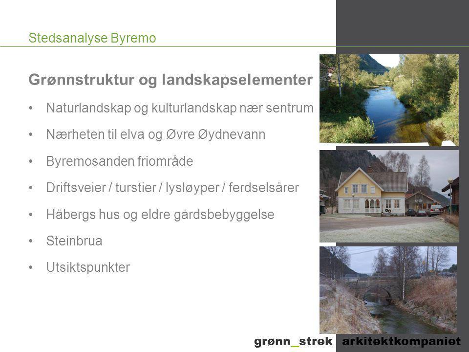 Stedsanalyse Byremo Grønnstruktur og landskapselementer •Naturlandskap og kulturlandskap nær sentrum •Nærheten til elva og Øvre Øydnevann •Byremosande