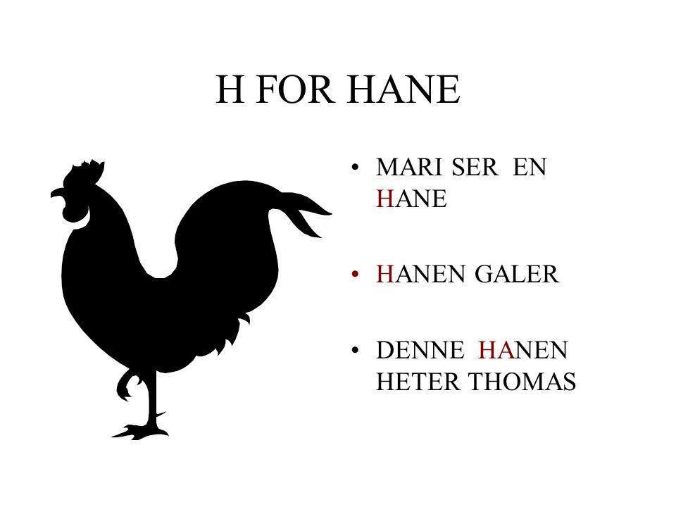 H FOR HANE •MARI SER EN __ANE •__ANEN GALER •DENNE __ __ NEN HETER THOMAS