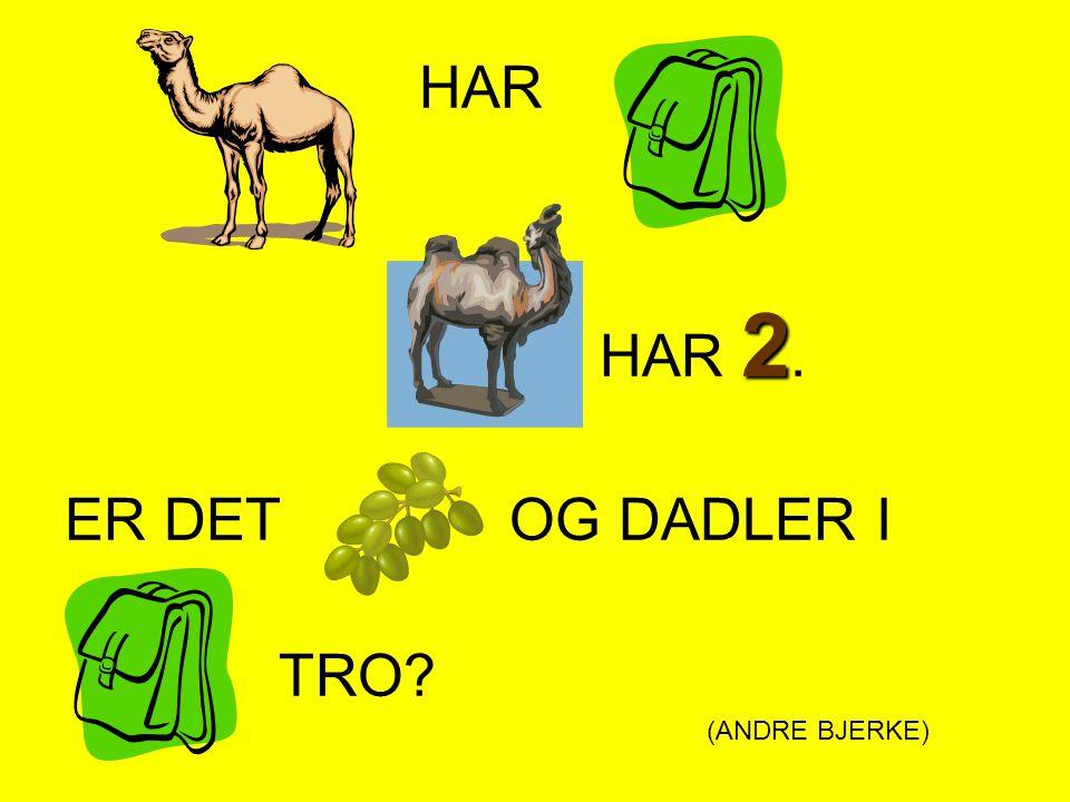 HAR 2 HAR 2. ER DET OG DADLER I TRO? (ANDRE BJERKE)