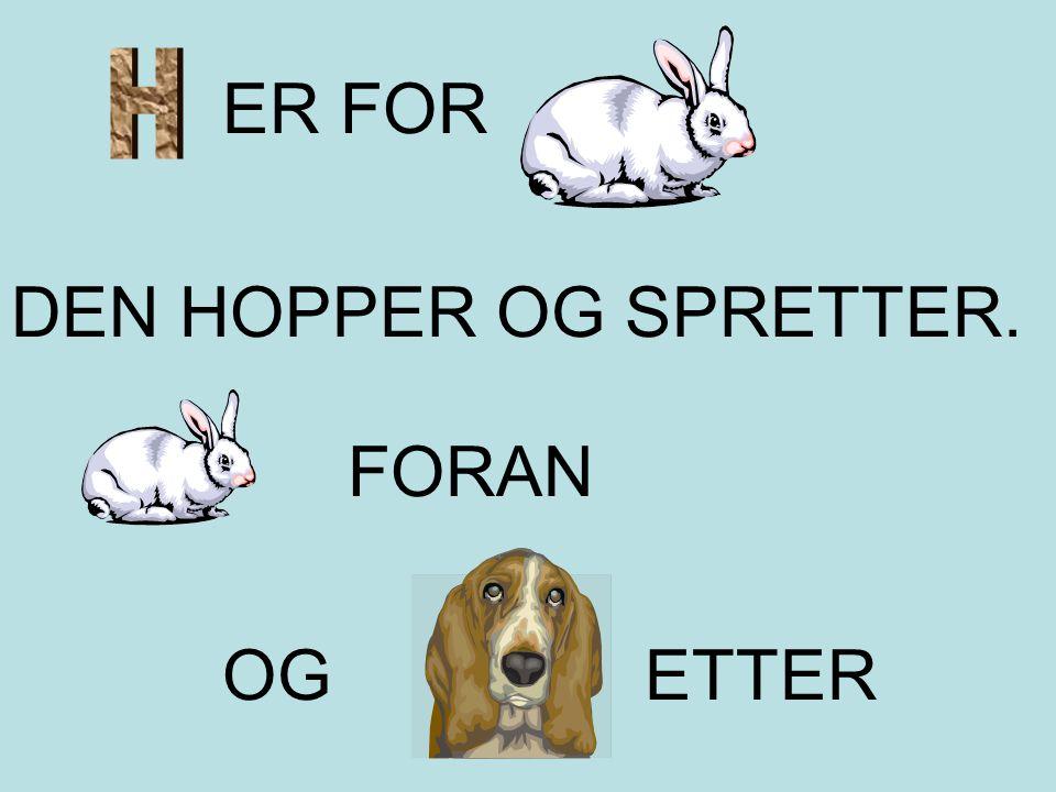 ER FOR DEN HOPPER OG SPRETTER. FORAN OG ETTER
