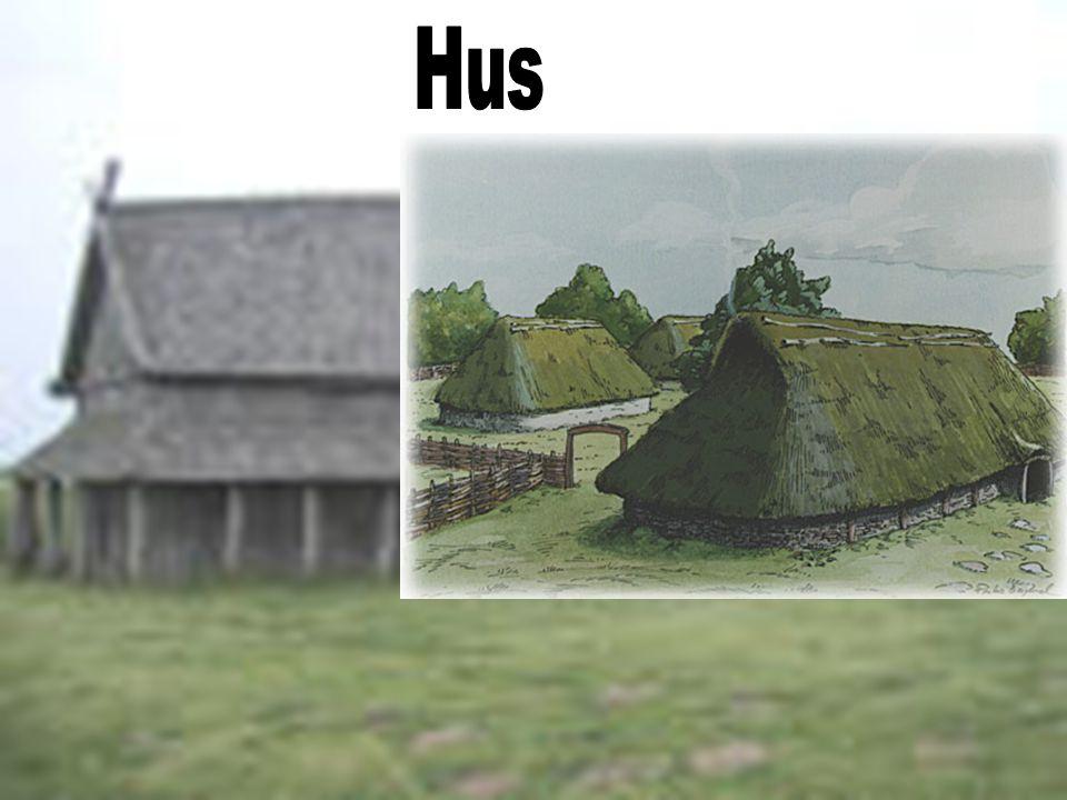 •Vikingene bodde i langhus.•De var ca. 20 meter lange og 5 meter brede.