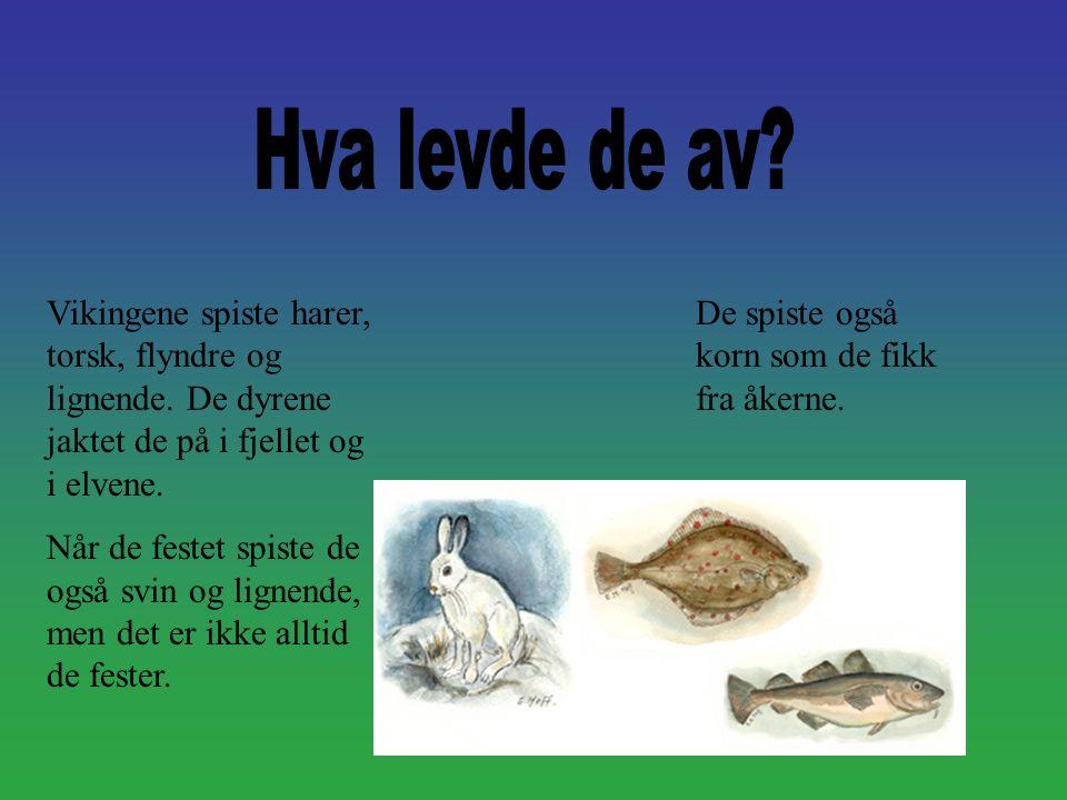 Vikingene spiste harer, torsk, flyndre og lignende. De dyrene jaktet de på i fjellet og i elvene. Når de festet spiste de også svin og lignende, men d