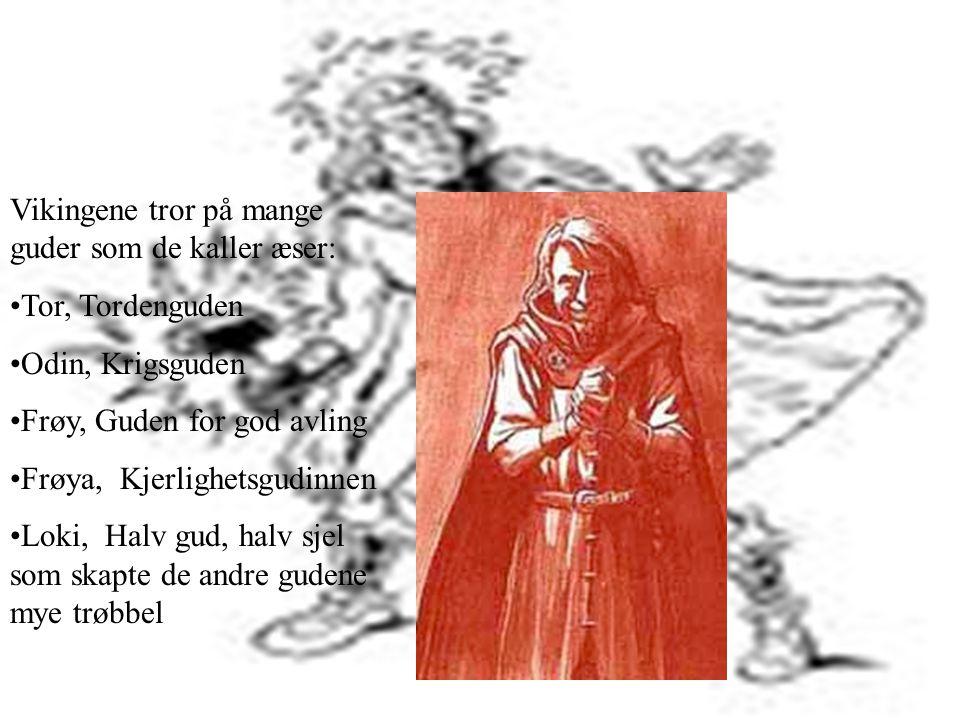 Vikingene tror på mange guder som de kaller æser: •Tor, Tordenguden •Odin, Krigsguden •Frøy, Guden for god avling •Frøya, Kjerlighetsgudinnen •Loki, Halv gud, halv sjel som skapte de andre gudene mye trøbbel