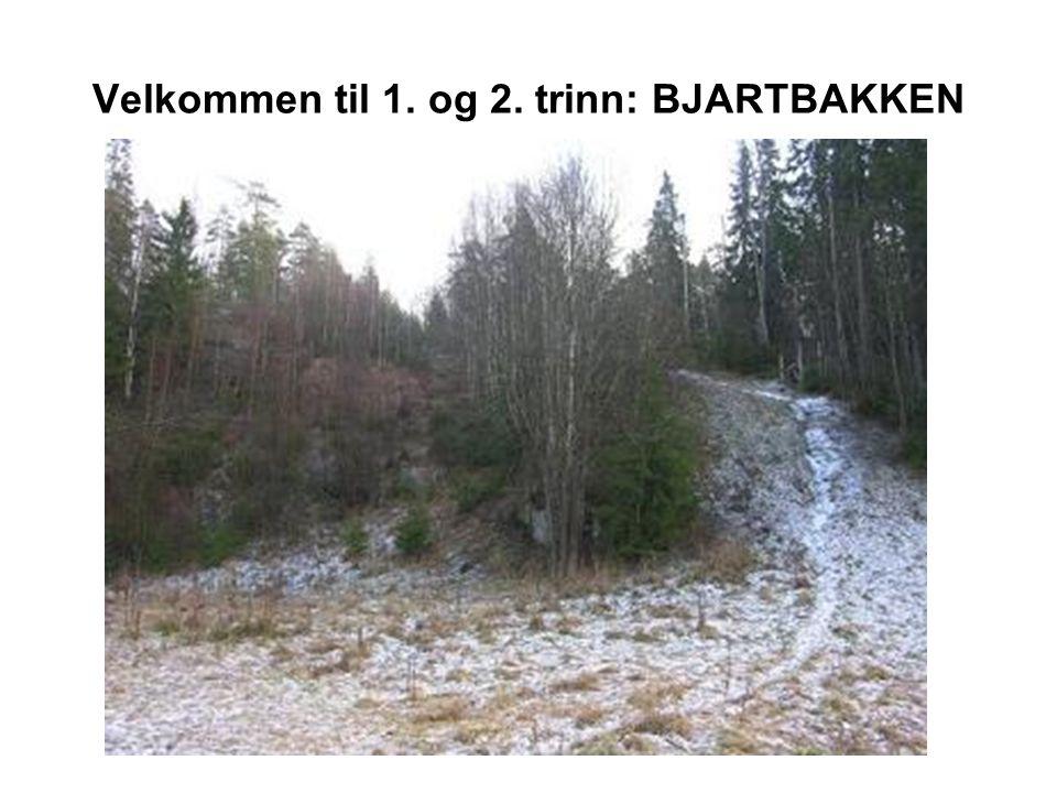 Hoppbakke ved Oppsal.Første bakke bygd av idrettslaget Bjart og innviet i 1934.