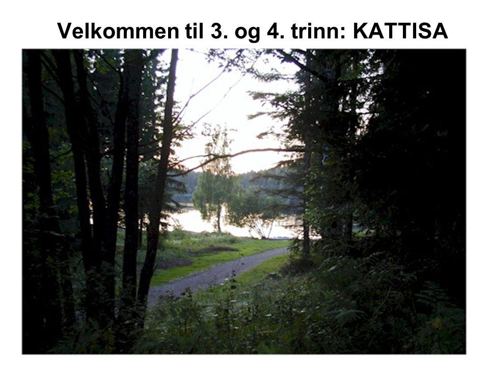 Kattisa • Kattisa var hvilestue for hestekarene som på vinterføre kjørte planker fra sagbrukene i Enebakk til Christiania på 1700- og 1800-tallet.