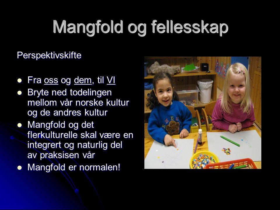Mangfold og fellesskap Perspektivskifte  Fra oss og dem, til VI  Bryte ned todelingen mellom vår norske kultur og de andres kultur  Mangfold og det