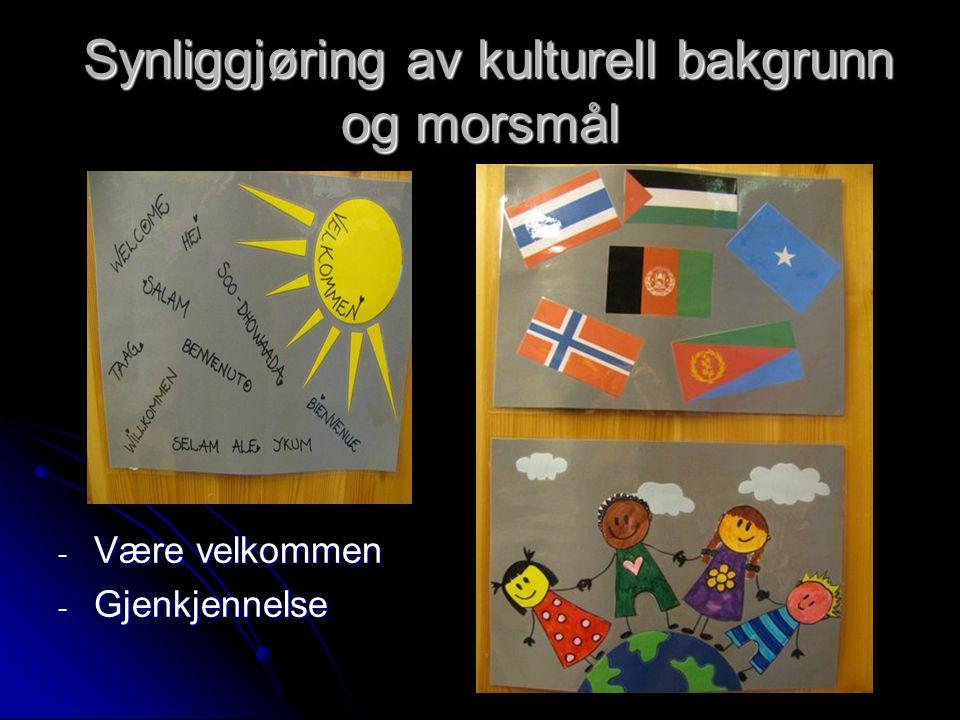 Synliggjøring av kulturell bakgrunn og morsmål Synliggjøring av kulturell bakgrunn og morsmål - Være velkommen - Gjenkjennelse