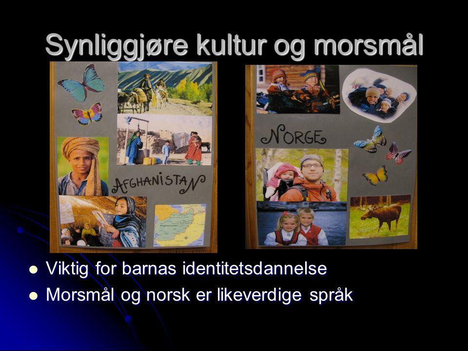 Synliggjøre kultur og morsmål  Viktig for barnas identitetsdannelse  Morsmål og norsk er likeverdige språk