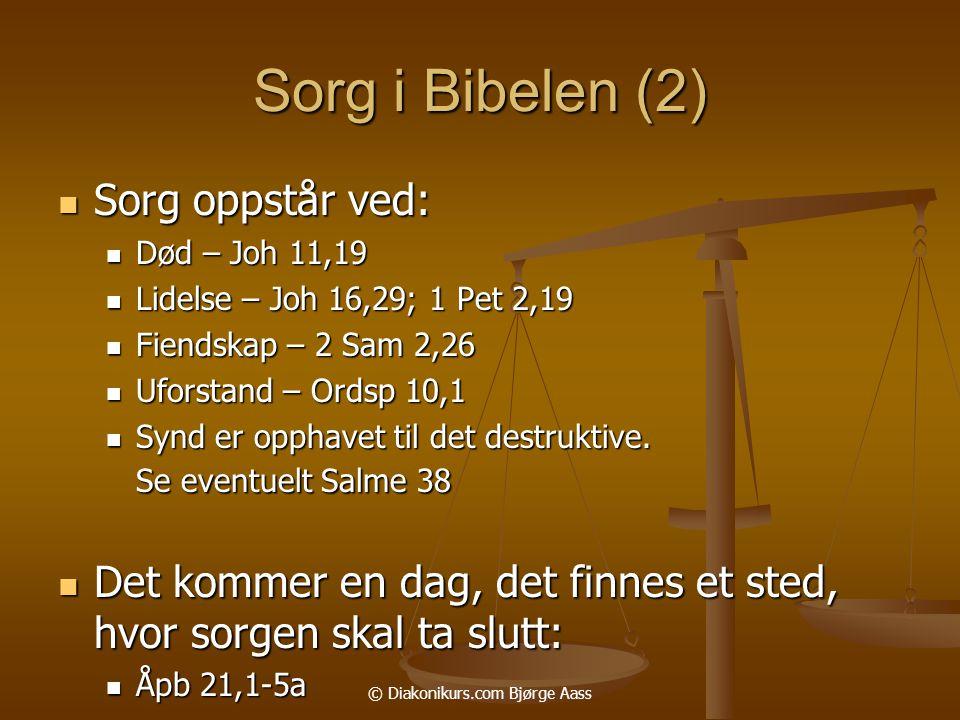 © Diakonikurs.com Bjørge Aass Sorg i Bibelen (2)  Sorg oppstår ved:  Død – Joh 11,19  Lidelse – Joh 16,29; 1 Pet 2,19  Fiendskap – 2 Sam 2,26  Uforstand – Ordsp 10,1  Synd er opphavet til det destruktive.