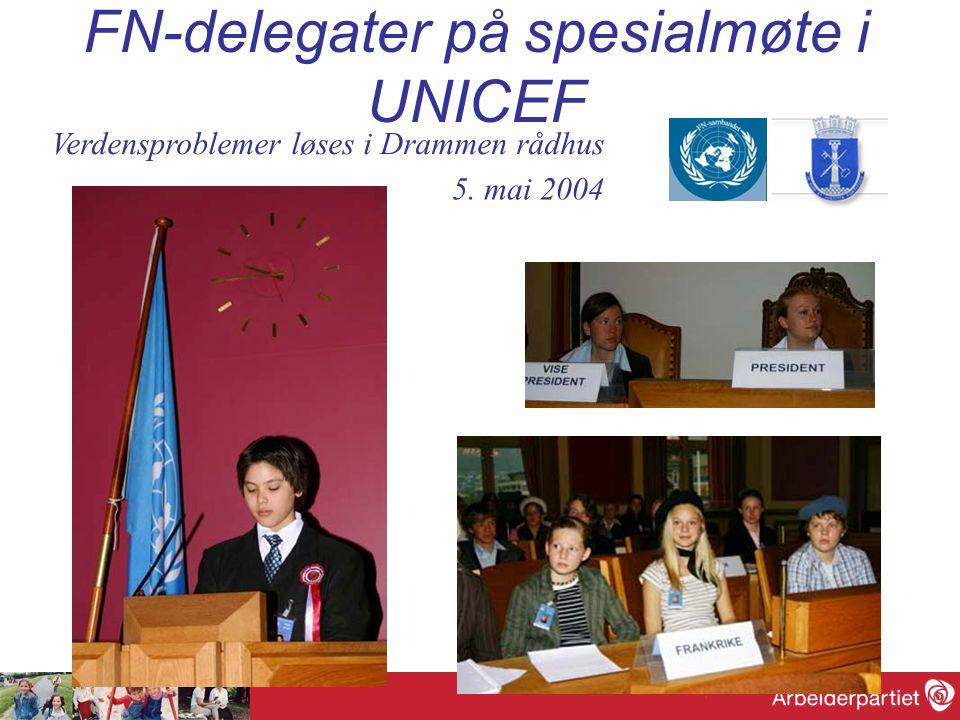 FN-delegater på spesialmøte i UNICEF Verdensproblemer løses i Drammen rådhus 5. mai 2004