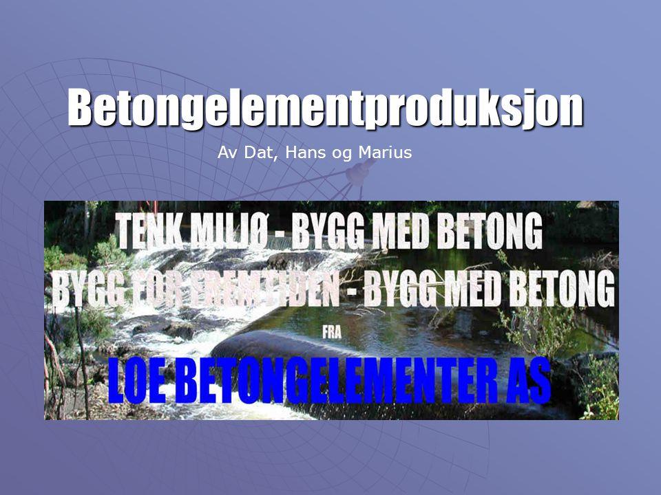 Betongelementproduksjon Av Dat, Hans og Marius