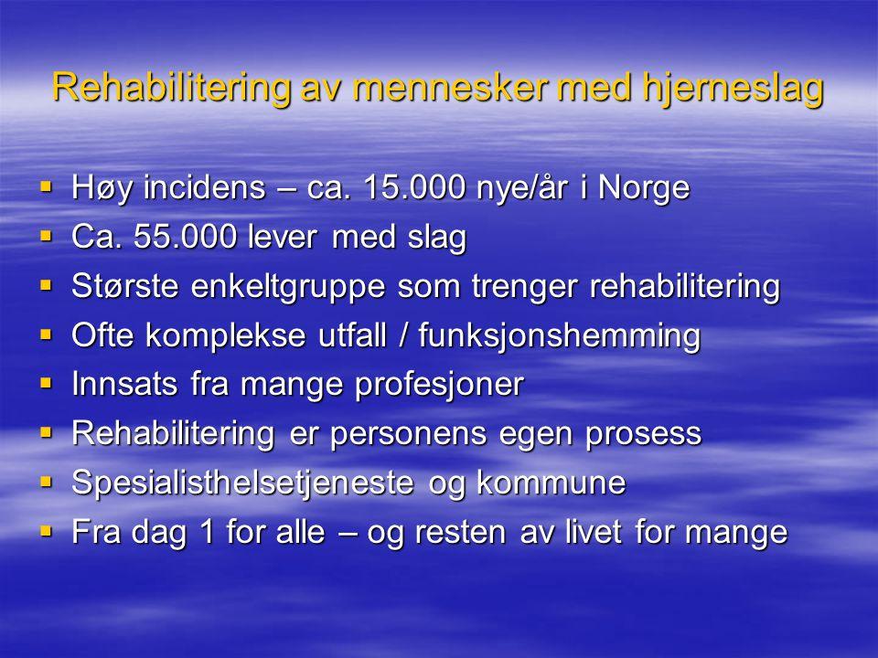 Rehabilitering av mennesker med hjerneslag  Høy incidens – ca. 15.000 nye/år i Norge  Ca. 55.000 lever med slag  Største enkeltgruppe som trenger r