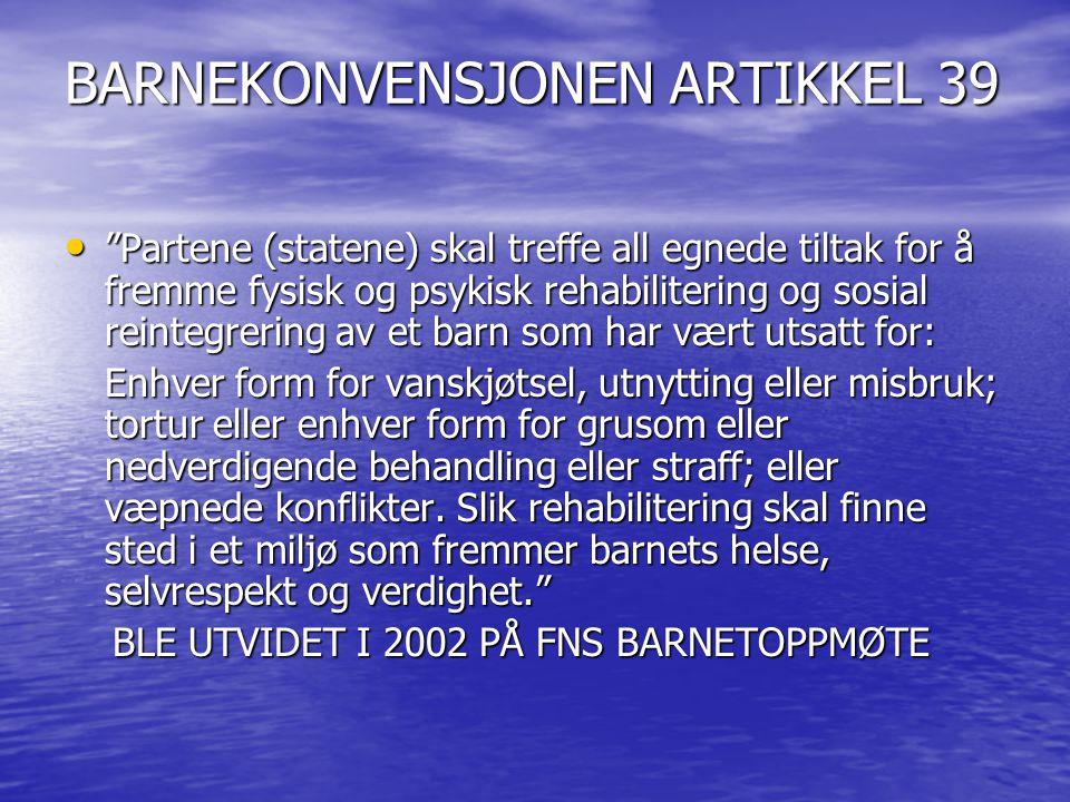 BESKYTTELSEN AV BARNET I BARNEKONVENSJONEN • ART.3: BARNETS BESTE • ART.