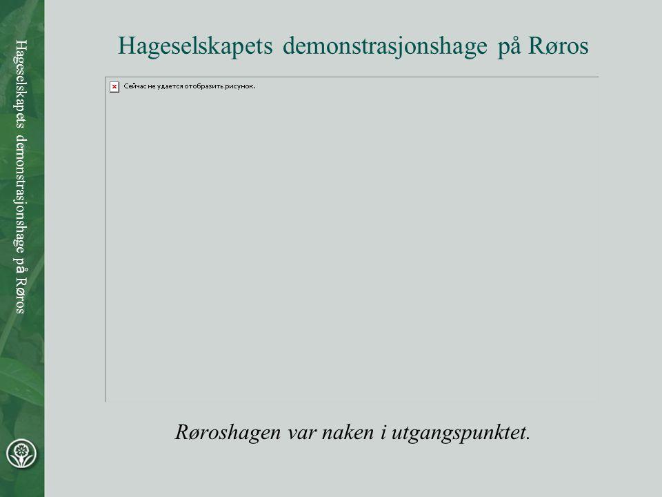 Hageselskapets demonstrasjonshage på Røros Røroshagen var naken i utgangspunktet.