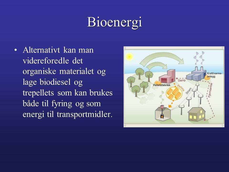 •Alternativt kan man videreforedle det organiske materialet og lage biodiesel og trepellets som kan brukes både til fyring og som energi til transport