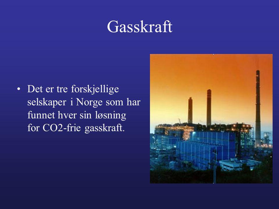 Gasskraft •Det er tre forskjellige selskaper i Norge som har funnet hver sin løsning for CO2-frie gasskraft.