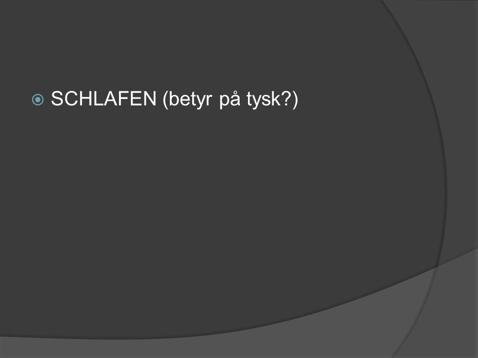  SCHLAFEN (betyr på tysk?)