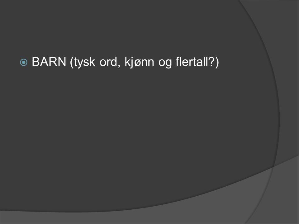  BARN (tysk ord, kjønn og flertall?)