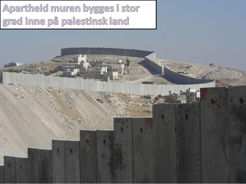 Vestbredden • Muren, veisperringer, sjekkpunkter, israelsk byråkrati og bosettere  Hindrer palestinere i å komme til og dyrke sin jord, komme til skoler og universiteter, sykehus  Bosettere regelrett ødelegger avlinger og utøver vold mot palestinske bønder