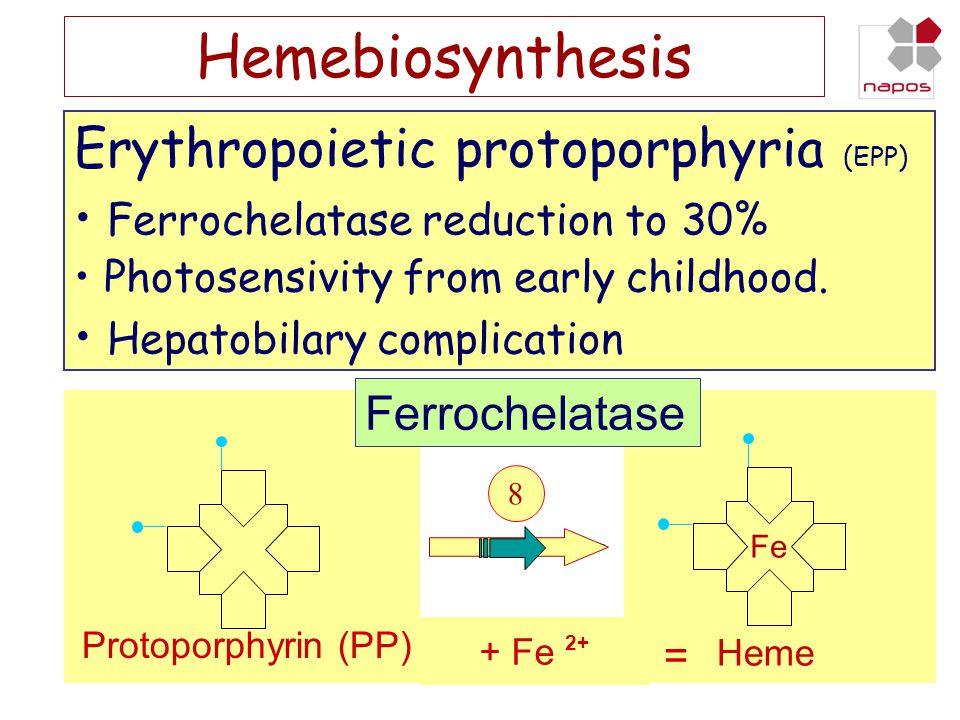 Hemebiosynthesis Glycin Succinat 1234 765 Fe 8 Heme Protoporphyrin (PP) Ferrochelatase + Fe 2+ = Erythropoietic protoporphyria (EPP) • Ferrochelatase