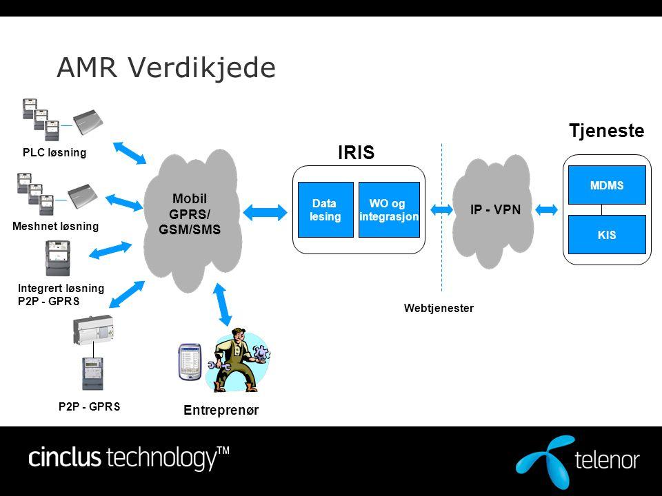 AMR Verdikjede Mobil GPRS/ GSM/SMS Entreprenør Data lesing WO og integrasjon MDMS KIS IRIS Tjeneste IP - VPN Webtjenester P2P - GPRS Integrert løsning