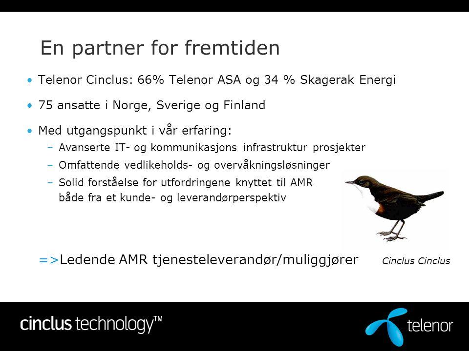 En partner for fremtiden •Telenor Cinclus: 66% Telenor ASA og 34 % Skagerak Energi •75 ansatte i Norge, Sverige og Finland •Med utgangspunkt i vår erf