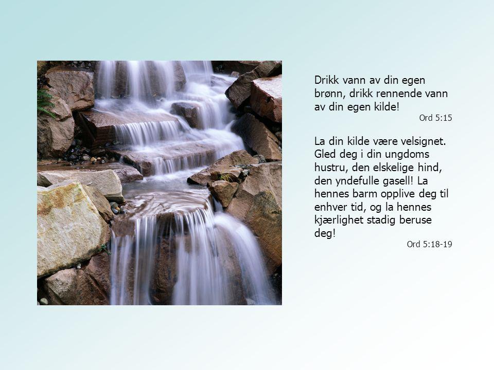 Drikk vann av din egen brønn, drikk rennende vann av din egen kilde! Ord 5:15 La din kilde være velsignet. Gled deg i din ungdoms hustru, den elskelig
