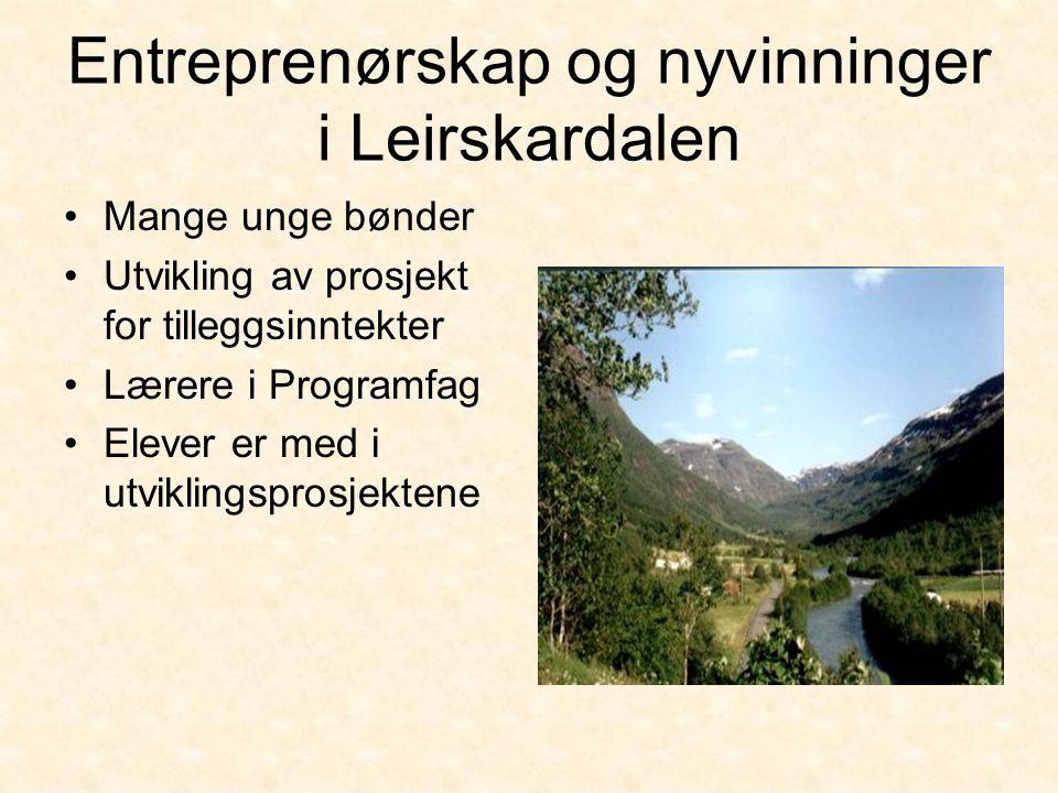 Entreprenørskap og nyvinninger i Leirskardalen •Mange unge bønder •Utvikling av prosjekt for tilleggsinntekter •Lærere i Programfag •Elever er med i utviklingsprosjektene