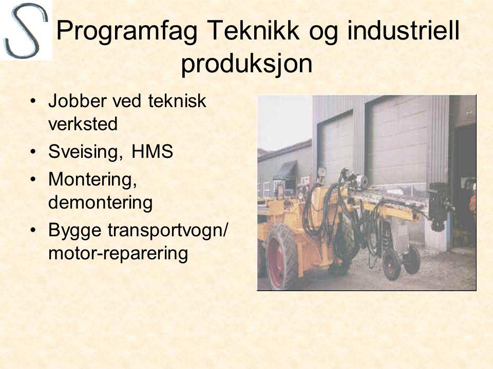 Programfag Teknikk og industriell produksjon •Jobber ved teknisk verksted •Sveising, HMS •Montering, demontering •Bygge transportvogn/ motor-reparering