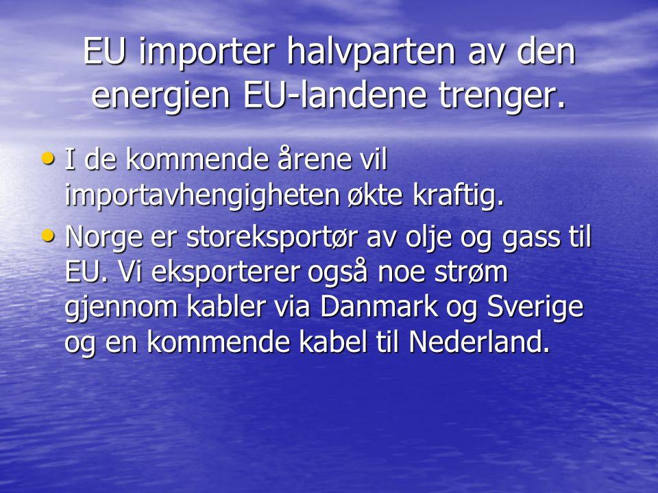 EU importer halvparten av den energien EU-landene trenger.
