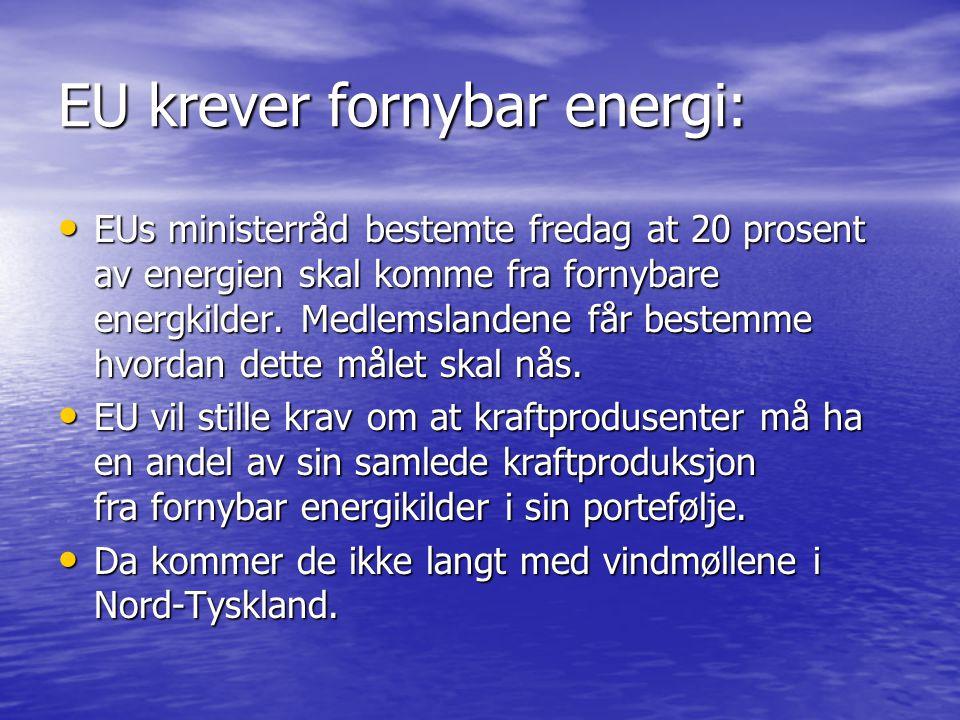 EU krever fornybar energi: • EUs ministerråd bestemte fredag at 20 prosent av energien skal komme fra fornybare energkilder.