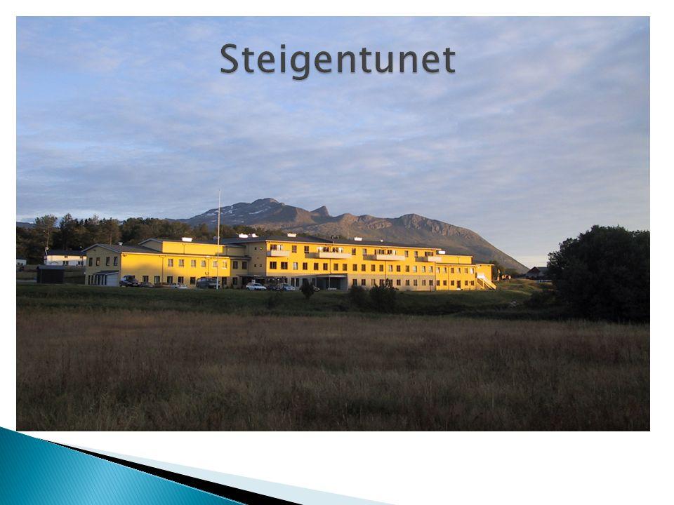  Reetablering av røntgentilbud i Steigen, blyskjermet akuttrom  Overlege radiologisk avd i samarbeid med medisinsk faglig ansvarlig lege og radiograffaglig personale i kommunen.