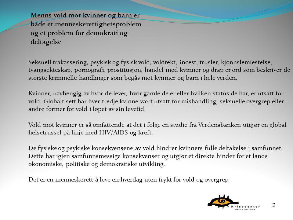  Økonomisk vold  Sosial vold  Psykisk vold/trusler  Materiell vold  Fysisk vold  Seksuelle overgrep  Tvangsekteskap  Prostitusjon - sexhandel med kvinner og barn.